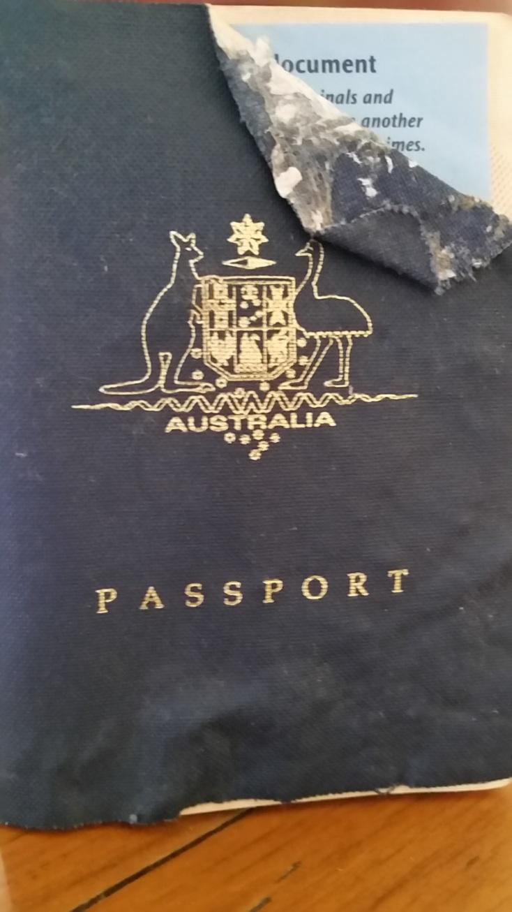 The pup chewed my passport!